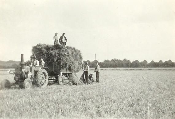 Verladen von Garben 1954 (erster Traktor)